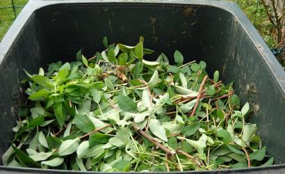 Zelený odpad tento rok posledný raz odvezú od rodinných domov koncom novembra
