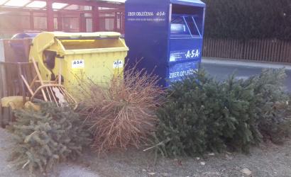 Začal sa organizovaný odvoz vianočných stromčekov