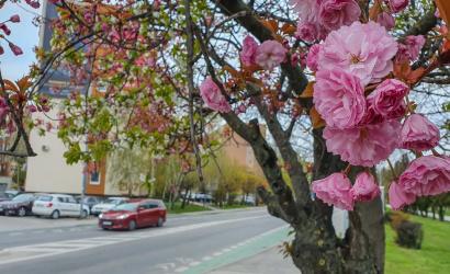 Snáď jar, ale daždivá