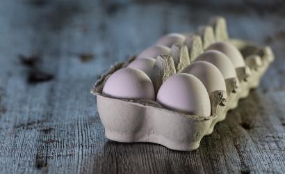 16 možností na náhradu vajec