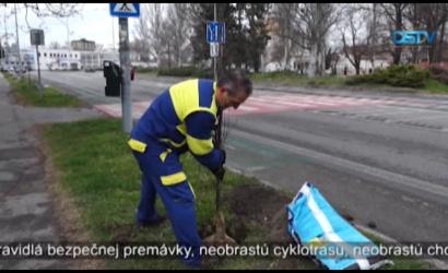 Embedded thumbnail for Aktivity v rámci programu Pre zelenšiu Dunajskú Stredu