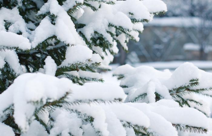 Zasnežené Vianoce boli na celom Slovensku naposledy v roku 2020