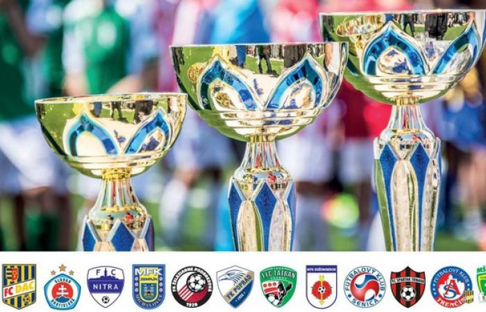 Pohár prípraviek U11: Prvýkrát v organizácii MOL Football Academy!