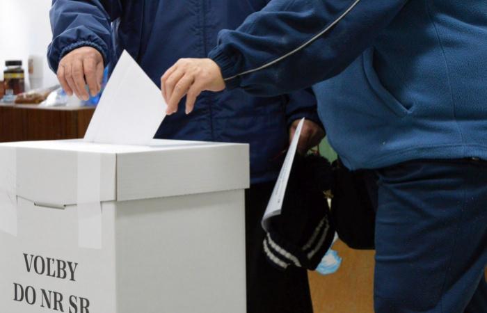 Voľby do parlamentu budú 29. februára 2020