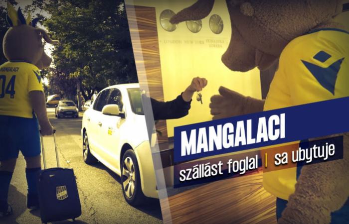 Video: Mangalaci sa ubytuje