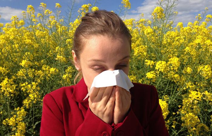 Neliečená alergia môže poškodiť zdravie