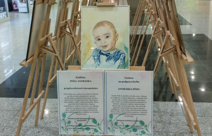 Kúpou obrazu podporíme Pódu Andrásku