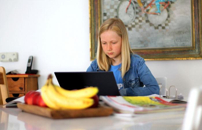 Gröhling chce rozšíriť domáce vzdelávanie
