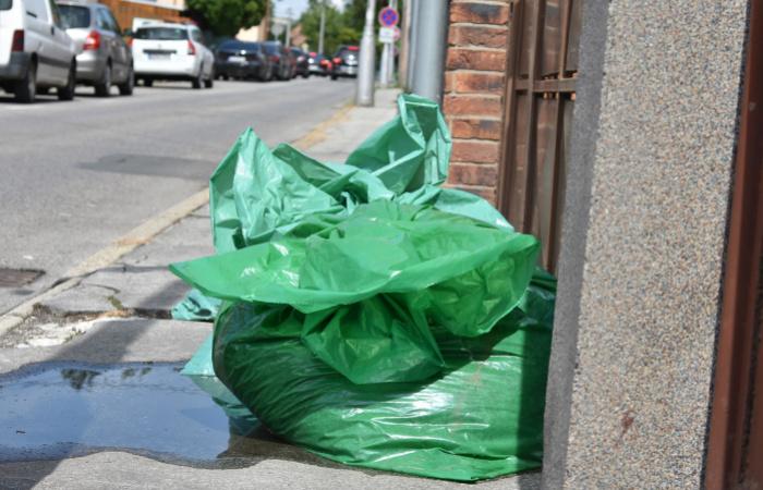 Odvoz záhradníckeho drevného odpadu bude koncom novembra