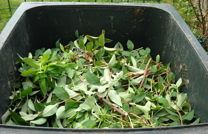 Posledný odvoz zeleného odpadu v tomto roku na začiatku decembra