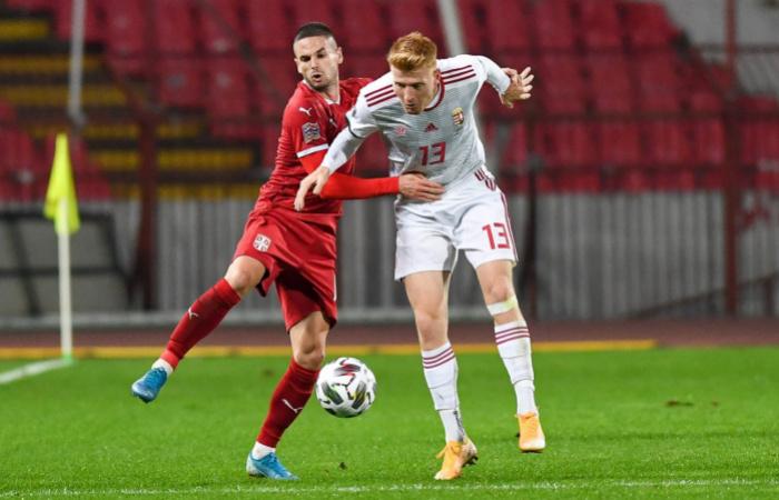 Video: Celé to začalo u Kalmára! Víťazný gól Maďarska v Srbsku