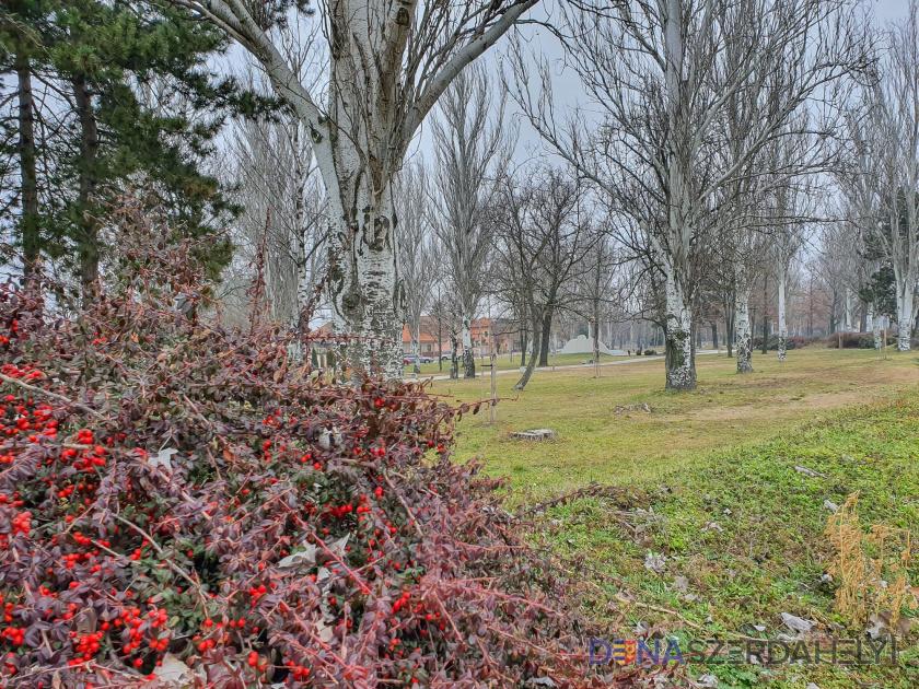 Jar, ktoré sa môže strácať v hmle