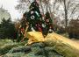 Vianočné trhy tento rok nebudú, adventné sviečky sa zapália